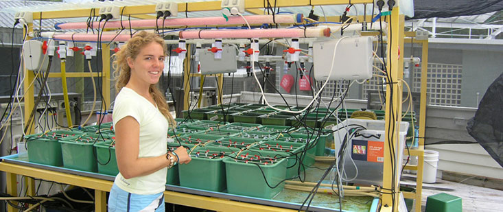 Ocean-Acidification-setup,-small,-MarineP6010063